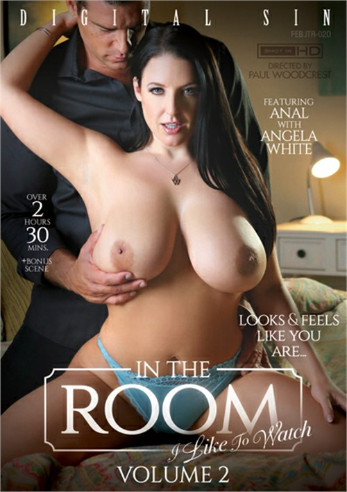 In The Room: I Like To Watch Vol. 2 (2019/SD/480p/1.8 GB)