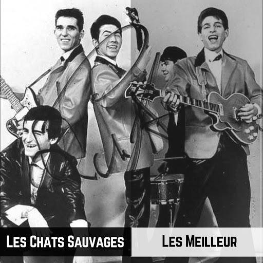 Les Chats Sauvages - Les Meilleur (Il Meglio) (2019) .mp3 -320 Kbps
