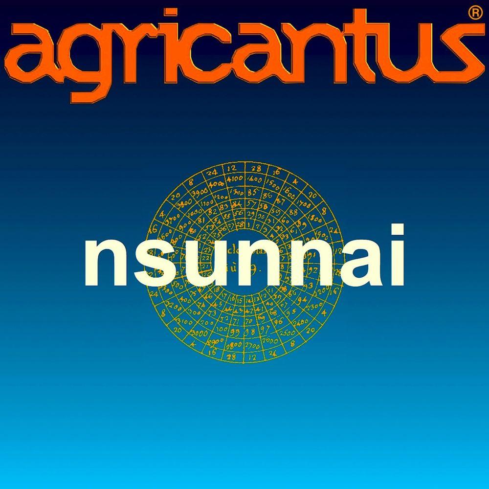 Agricantus - Nsunnai [Single] (2014) .flac