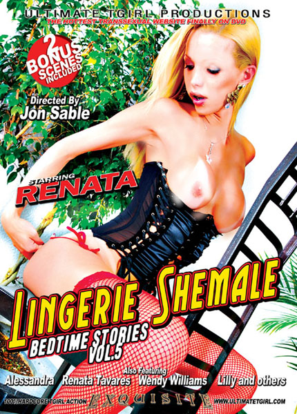 Lingerie Shemale Bedtime Stories 5 (2010)