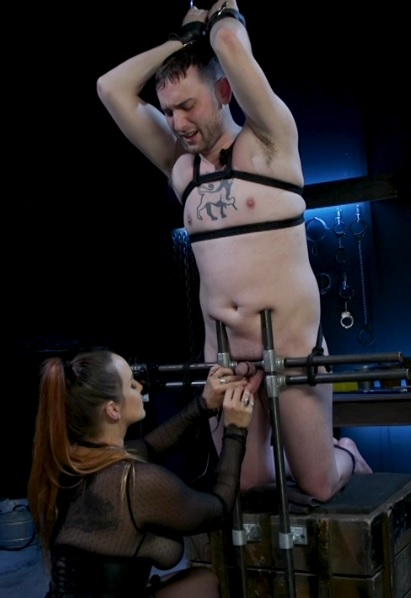 New Male Dom Made to Submit and Take Pain