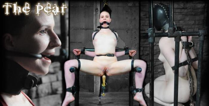 Bondage Porn with Claire Adams - The Pear [HD 720p] InfernalRestraints - (356.02 Mb)