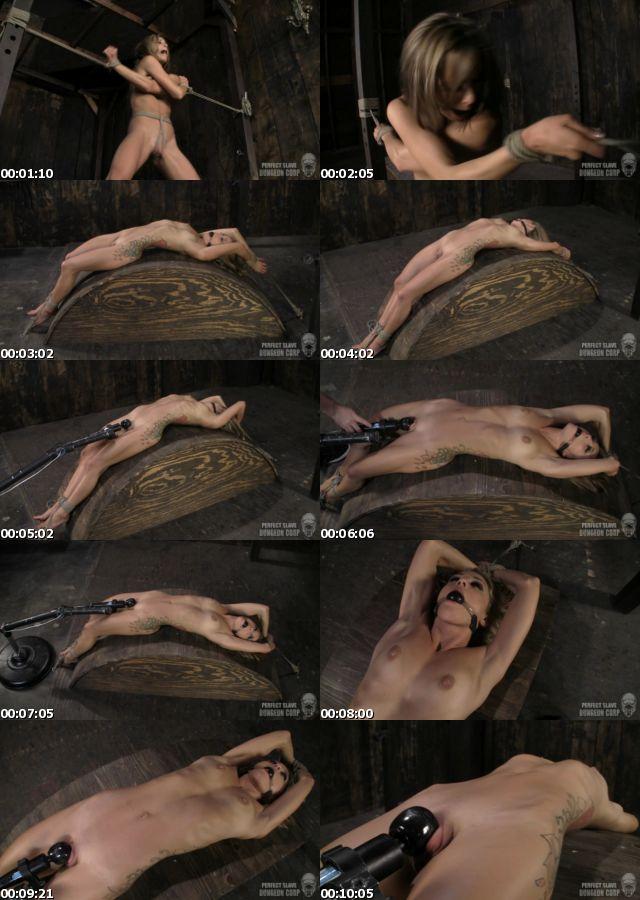 BDSM109_s.jpg