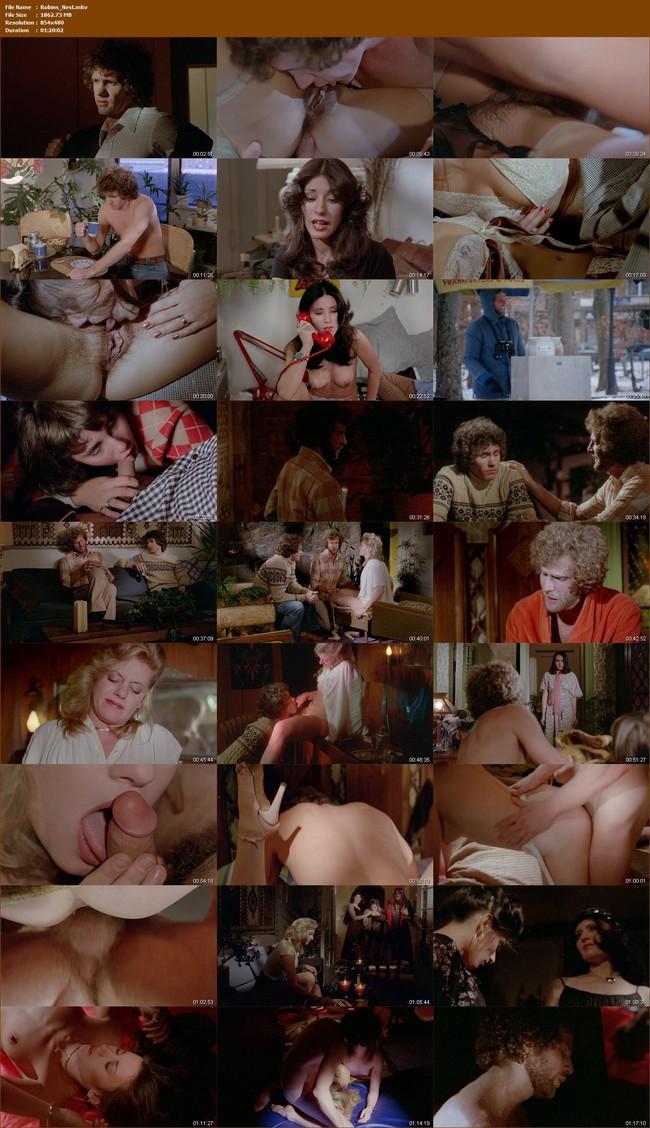 panjabi-girls-robins-nest-video-trailer-porn-sex