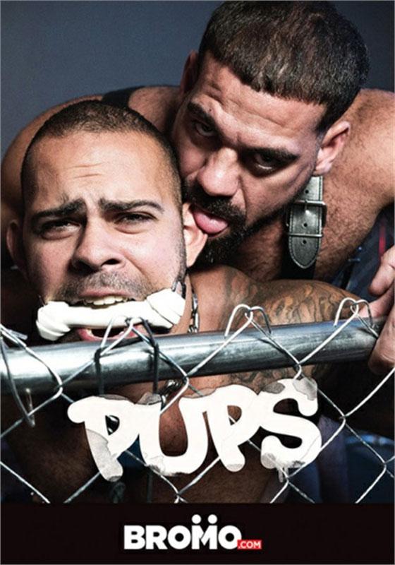 Pups (2019)