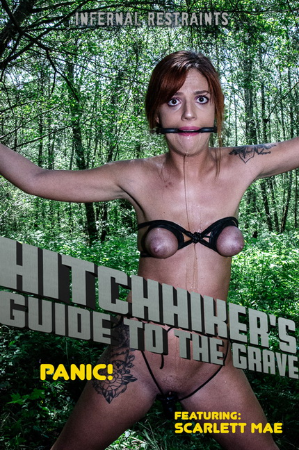 Hitchhiker's Guide to the Grave