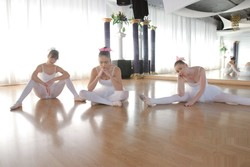 https://ist5-2.filesor.com/pimpandhost.com/4/9/4/2/49422/7/d/m/z/7dmzZ/ballerinas2_093_s.jpg