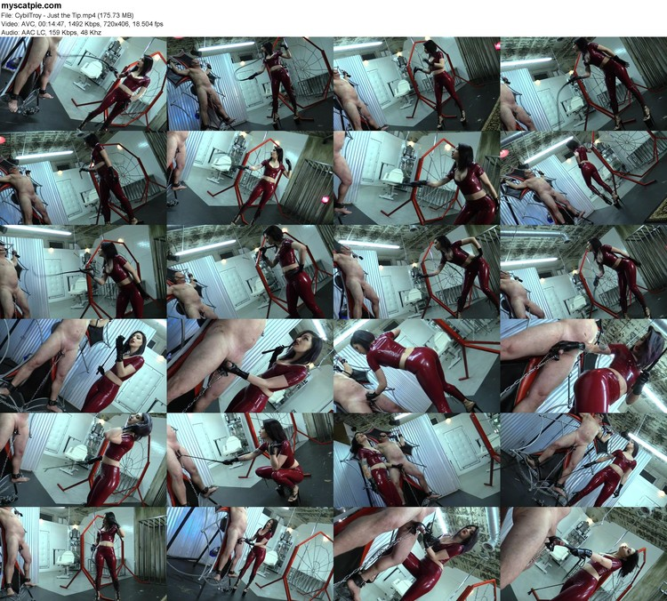 Cybiltroy - Just The Tip (mp4, 406p, 175.73 Mb)
