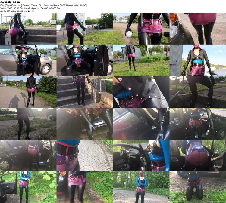 [clips4sale.com] Outdoor Transp Skirt Shop And Fuck Part Iii [avi] (avi, 1080p, 1.16 Gb)