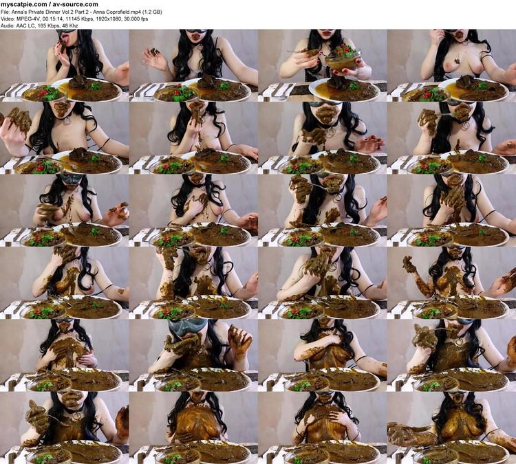 anna's Private Dinner Vol.2 Part 2 - Anna Coprofield (mpeg-4 Visual, 1920x1080, 1.2 Gb)