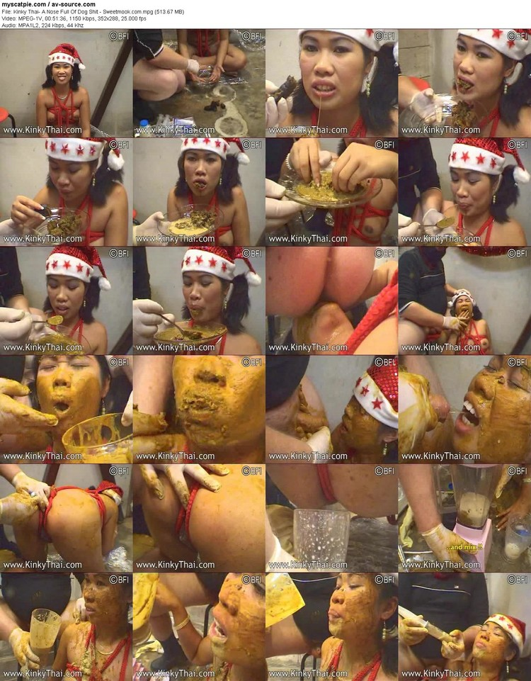 kinky Thai- A Nose Full Of Dog Shit - Sweetmook.com (513.67 Mb, Mpeg-1v, 288p)