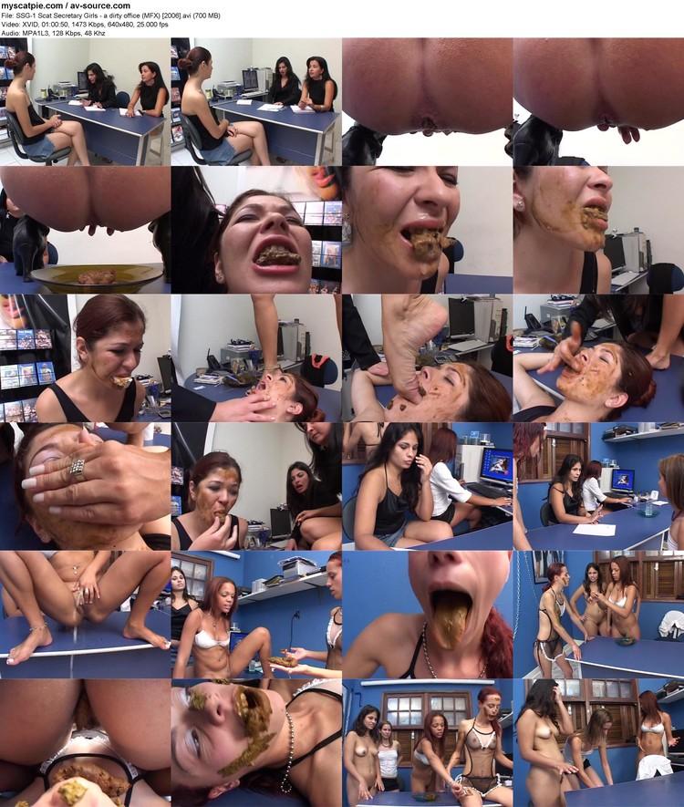 ssg-1 Scat Secretary Girls - A Dirty Office (mfx) [2006] (640x480, 700 Mb, Avi)