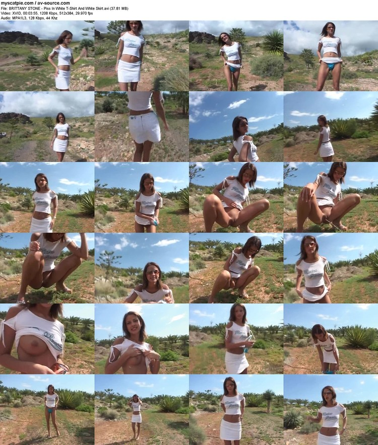 brittany Stone - Piss In White T-shirt And White Skirt (37.81 Mb, Xvid, 384p)