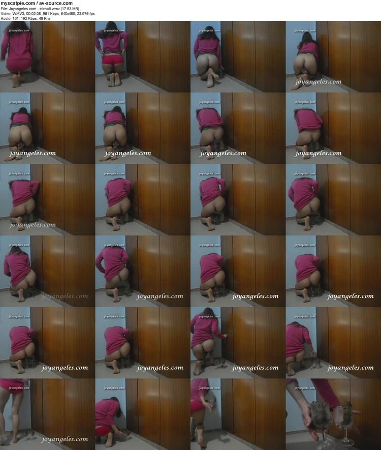 joyangeles.com - Elena5 (640x480, 17.53 Mb, Wmv)