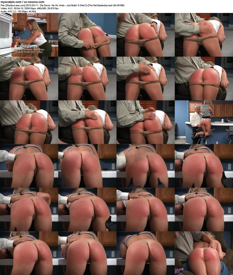 [shadowlane.com] 2012-03-11 - Dia Zerva - No Ifs, Ands - Just Butts! 3 (part 2)  (avc, 480x360, 64.09 Mb)