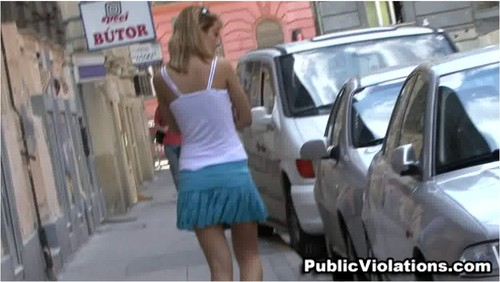 PublicViolation033_cover_m.jpg